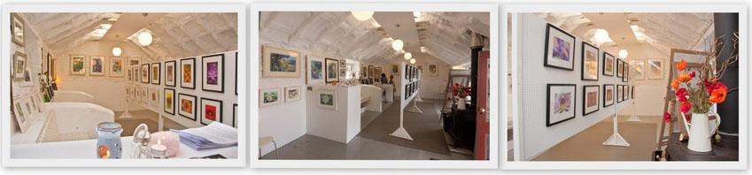 knockrose garden studio